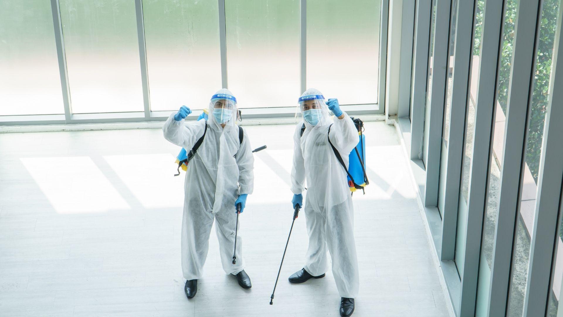 プロの除菌業者を使うという選択肢